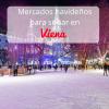 Viena y sus famosos Mercados de Navidad
